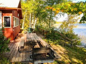 Birch_deck